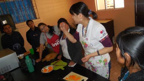 青年海外協力隊, 栄養士, 活動